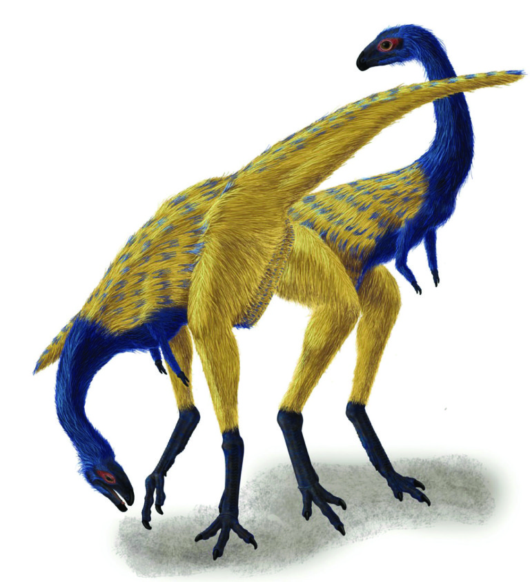 Limusaurus inextricabilis (rendering by Portia Sloan)